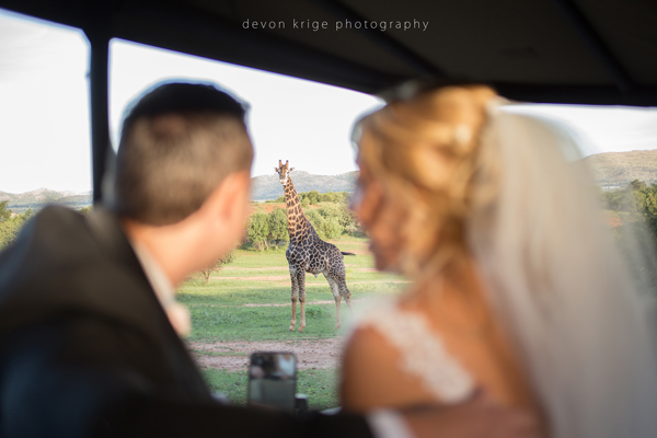 069-leopard-lodge-wedding-venue-beautiful-weeding-photos-best-wedding-photographer-in-johannesburg-south-africa